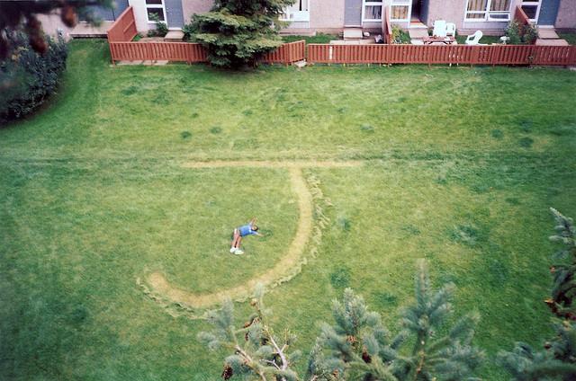 Aerial Yard